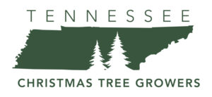 christmas tree grower middle tn