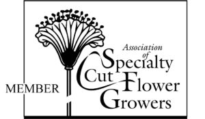 specialty cut flower growers